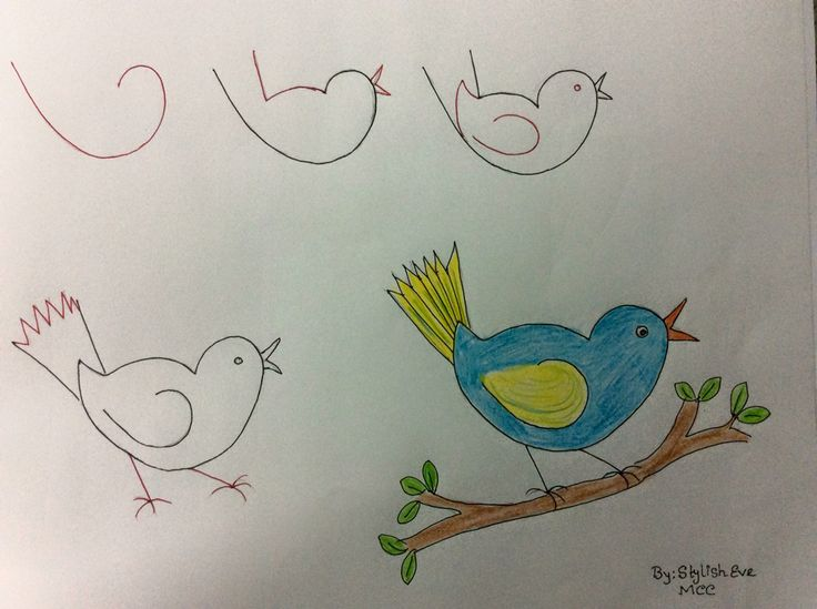 Easy bluebird