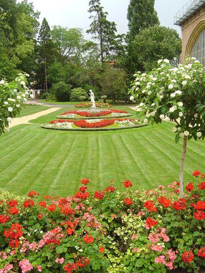 21 best jardin botanique images on pinterest botany for Jardin botanique metz