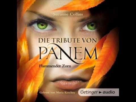 Die Tribute von Panem Flammender Zorn 2