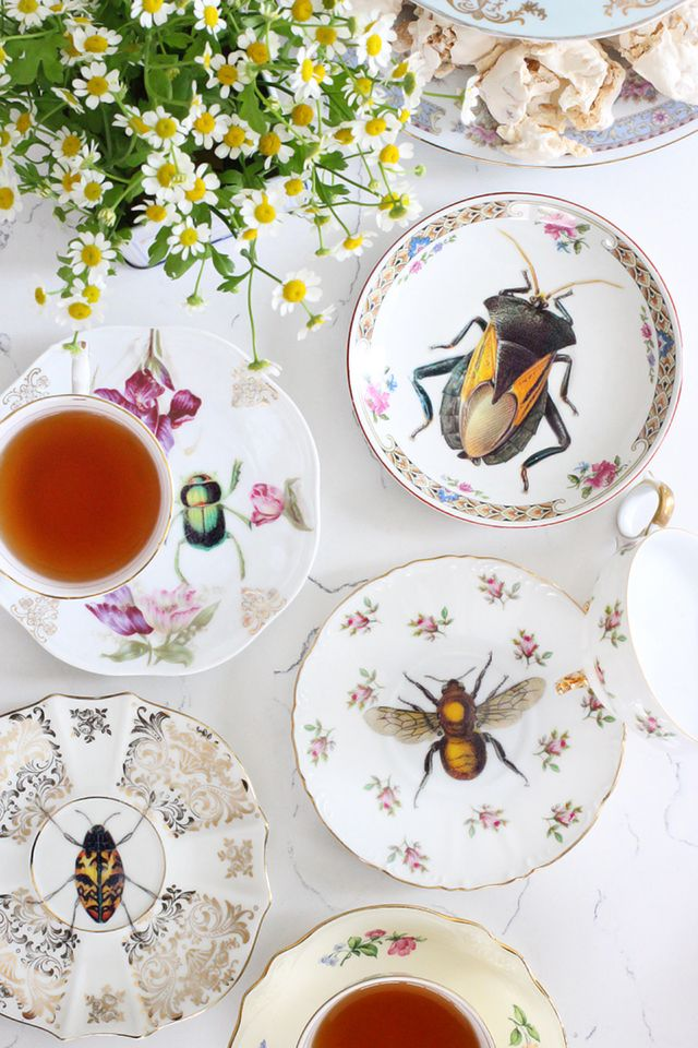 Bug Out. Upcycled Vintage Plates. #DIY