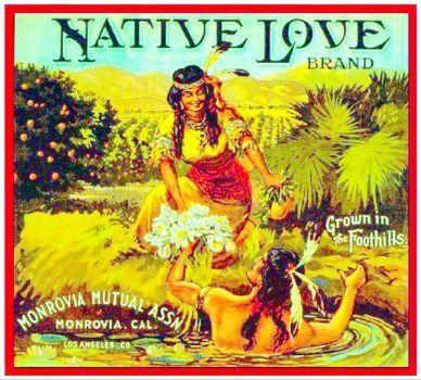Vintage_ad_Native_Love_Brand (440 pieces)