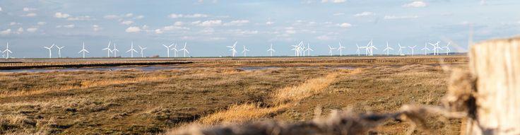 Wir betreiben in Nordfriesland am Standort Braderup ein Rechenzentrum, das ausschließlich mit lokal erzeugter regenerativer Energie betrieben wird. Durch die Verwendung eines Hybridspeichers (3 MWh) können wir große Mengen Windenergie speichern und b...