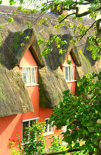 Orange Cottage with a Thatched Roof in Long Melford, Suffolk!