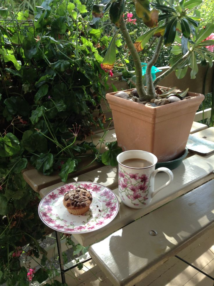 Coffee and a freshly made banana & oat gluten free muffin on my front porch on a glorious Queensland late winter/early spring, Sunday morning
