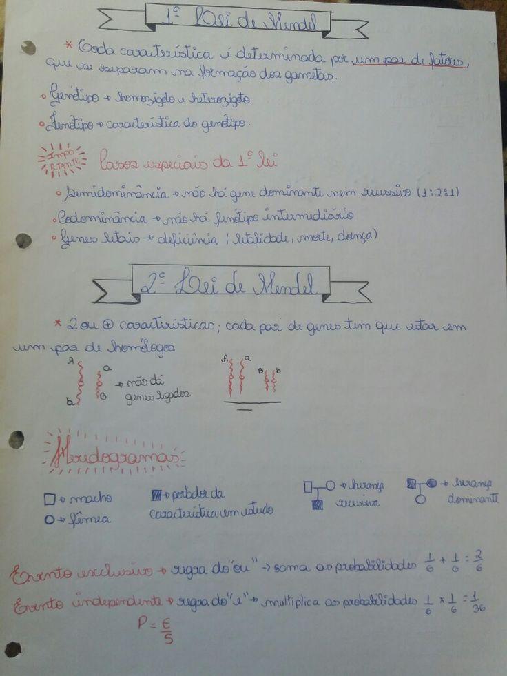(Matéria: Biologia) 1° e 2° Lei de Mendel ; um pouco sobre heredogramas