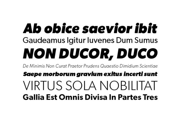 Gibson, YWFT, $48 (Complete). Humanist sans serif by Rod McDonald.