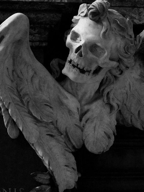Skull Bones, Gothic, Sick Art, Angels Of Death, Beautiful Odd, Dead, Art Projects, Angels Corpse, Memento Mori