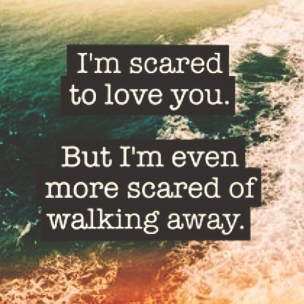 Quotes About Being Afraid To Love: Best 20+ Scared To Love Ideas On Pinterest