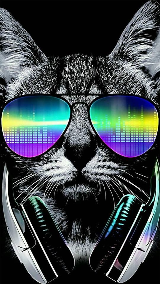 22 Free Cool Phone Wallpapers Cool Wallpapers For Phones Cat Wallpaper Cat Background