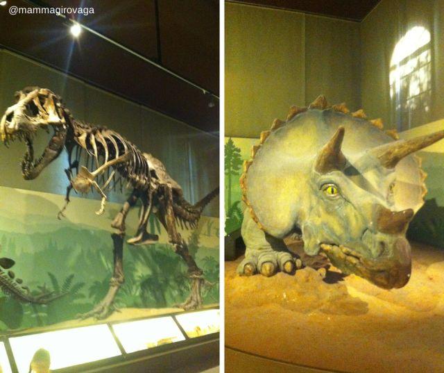 Alcuni dinosauri al Museo Civico di Storia Naturale di Milano #dinosauri #Milano #Milanoperbambini