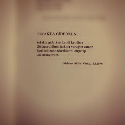 kitaplardan alıntılar...: Orhan Veli