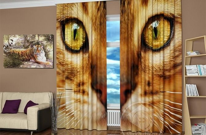 Стильные фотошторы: Кошачьи глаза
