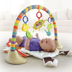 Toys For 1 Month Old Baby Newborn Toys Fisher Price Children S