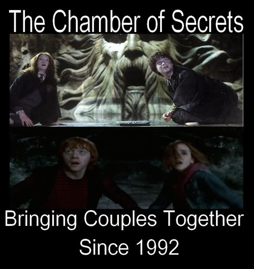 harry potter and the chamber of secrets- harry & Ron | The Chamber of Secrets - Harry Potter Vs. Twilight Photo (23868816 ...
