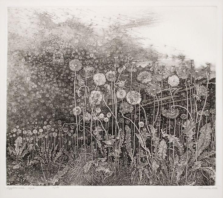Nikireev Stanislaw, etching of dandelions.