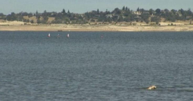 ABC10 Investigates Sacramento's drinking water secret. The carcinogen the public was never told about.