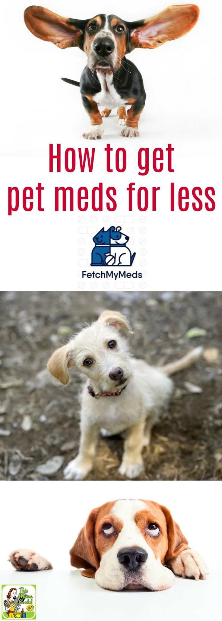 Want to know how to get pet meds for less? Click to learn how Fetch My Meds pet prescription discount card can help you save on pet meds at participating pharmacies like CVS, Walgreens, Walmart, Rite-Aid, Sam's Club and Costco in your local area. You can also use this free online vet med card to help you save on online pet meds at Pet360.com. It's free and easy to use and takes only a couple of minutes to sign up. #ad #fetchmymeds @fetchmymeds