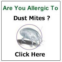Oh jeez. Im officially paranoid. Stupid Dust mite allergy