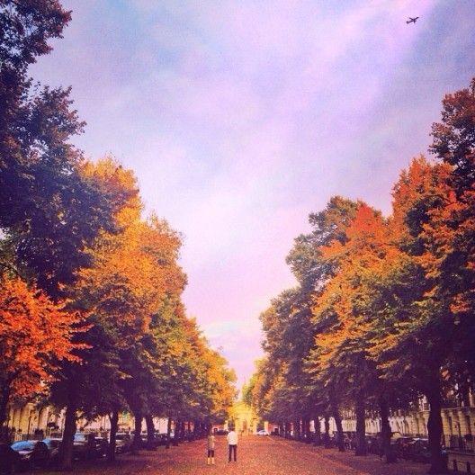 Autumn in London Town