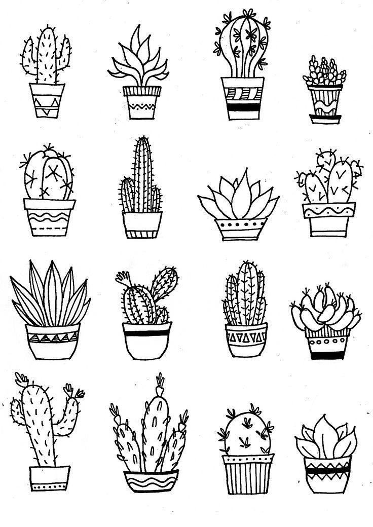 Cactus Illustration Doodle Desenhos Fofos E Faceis Cactos