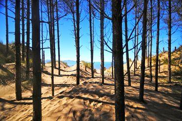 Newborough Warren Nature Reserve leading onto Newborough Beach, Anglesey, North Wales.