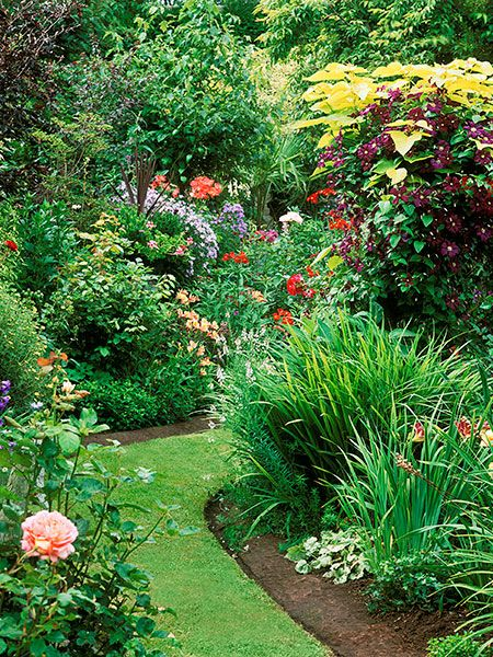 1000 images about landscaping tips techniques on pinterest backyard ponds walkways and - Gardening in summer heat a small survival guide ...