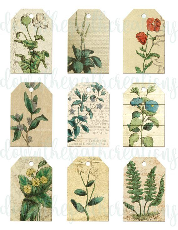 Vintage Medicinal Herb Tags INSTANT DOWNLOAD Printable Scrapbooking
