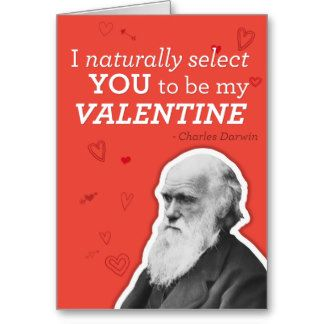 zazzle valentine photo cards