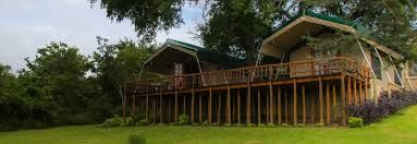 Sabie River Bush Lodge luxury tents.