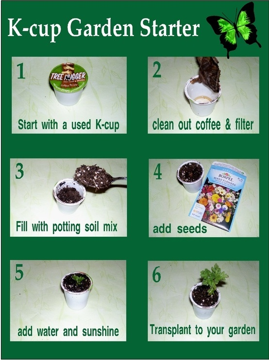 Turn your used K Cups into a beautiful garden by using them as seed starters!