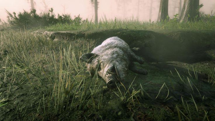 Red Dead Redemption 2 Legendary White Bison
