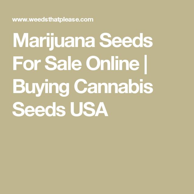 Marijuana Seeds For Sale Online | Buying Cannabis Seeds USA