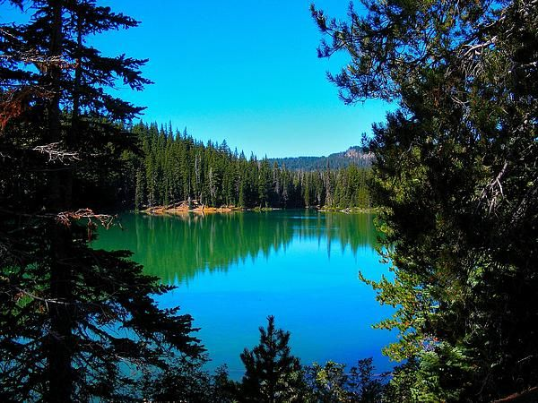 This is a photograph I took of Elk Lake in Bend, Oregon.  Oregon is such a beautiful State.  I will be going back for more scenic photograph's.  If interested, I have this and other photograph's for sale on my website.  #Kelly'sFineArtPhotos #ElkLake  #BendOregon #Lakes #Elk #Woods #PaddleBoards #Water  #BeautifulViews #Outdoors #Beautiful #Scenes #Scenic #DrOffice  #DentistOffice #Decor #Gift #WallArt #Swimming #Fishing #LogCabin  #SiteSeeing #ad