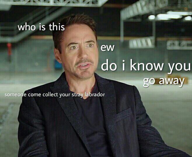 Assemble Avengers Chatroom Chatroom Memes Avengers