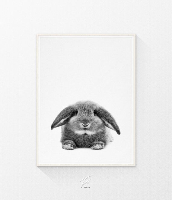Bunny Rabbit - Printable