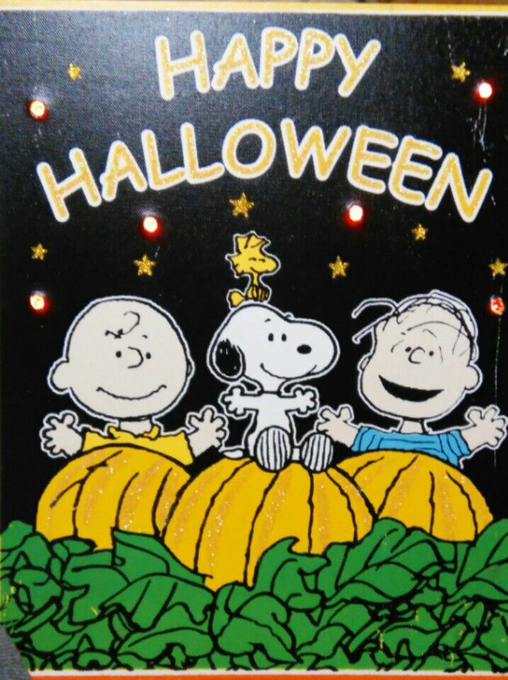 Great Pumpkin Charlie brown light up canvas Another one