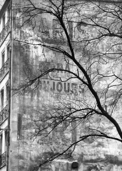 "Frank Horvat - Wall and tree (with ""Paris sera toujours Paris"") 