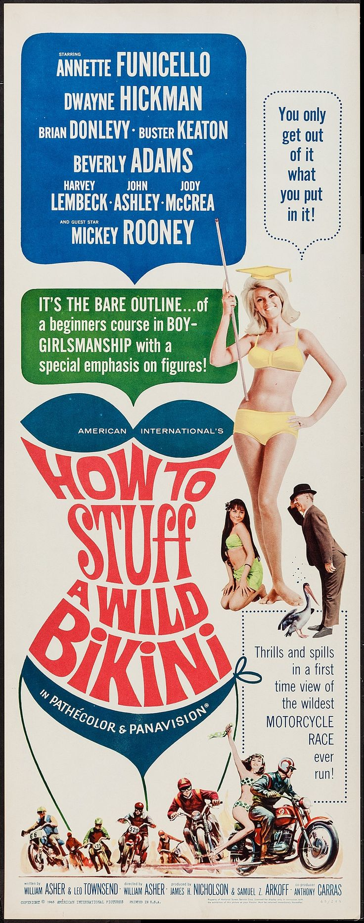 How to Stuff a Wild Bikini (1965) Stars: Annette Funicello, Dwayne Hickman, Brian Donlevy, Harvey Lembeck, Beverly Adams,Mickey Rooney  ~  Director: William Asher