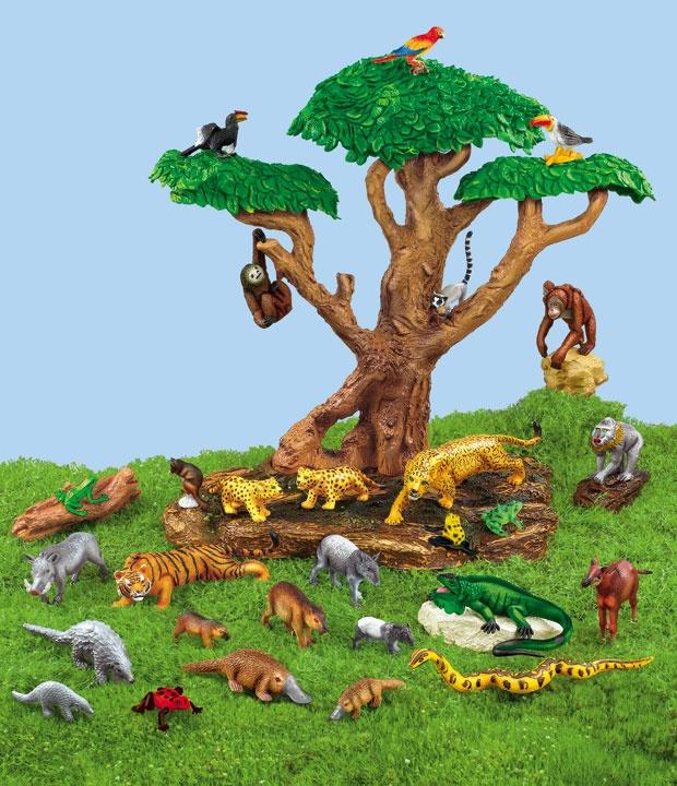 Rain Forest Habitat