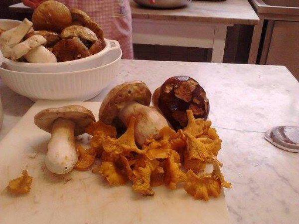 Sagra del Fungo e della Polenta Fritta