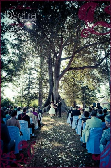 The is Old Petrie Town - Near North Lakes My wedding Venue http://lover.ly/vendors/photographer/fuschia-photography/15166/images/245150/?v=0