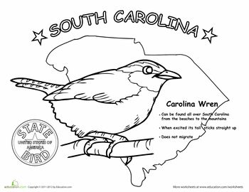 105 Best BIRDS ADULT COLORING PAGES Images On Pinterest