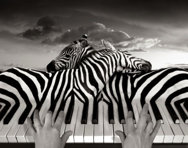 Surreal,Unreal,Imagine Photography | inspiration photos