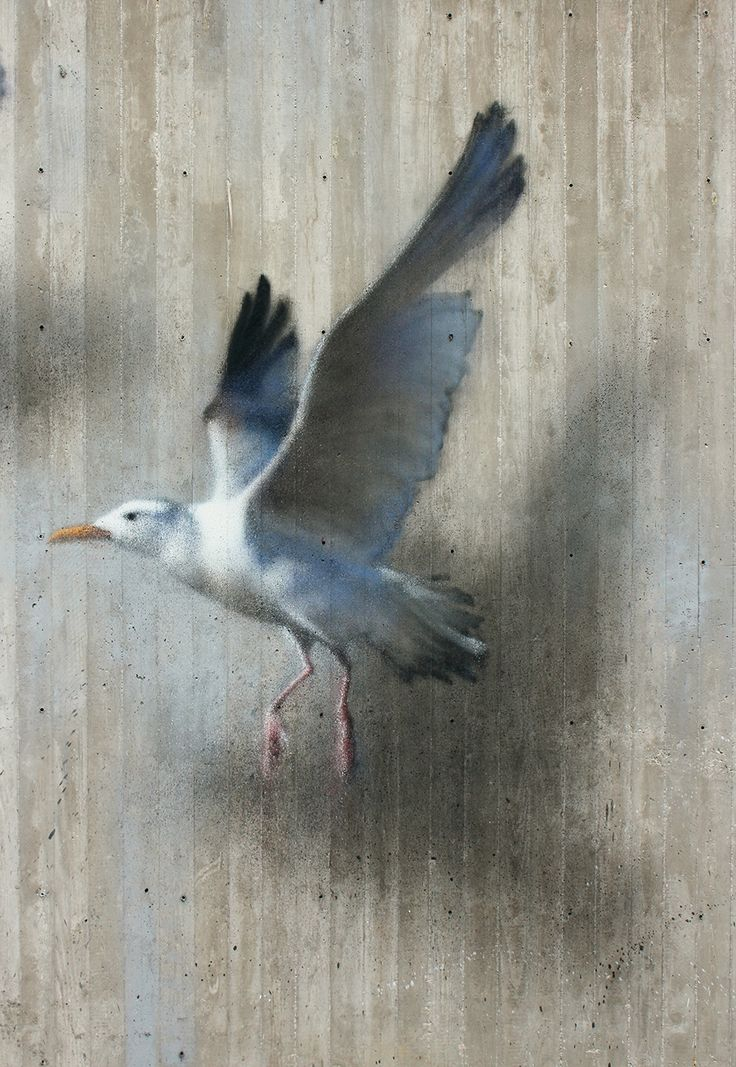 Ethereal Bird Murals on the Streets of Riccione by 'Eron'