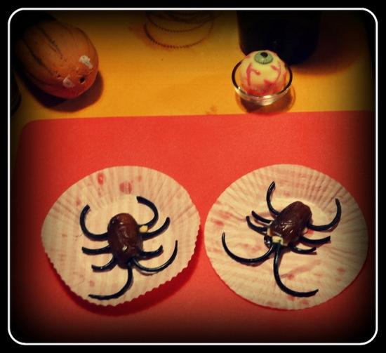 Cockroaches - Hamamböcekleri - Scarafaggi :)