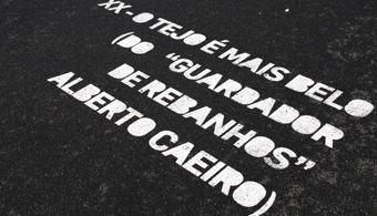 13 livros de Fernando Pessoa para download gratuito