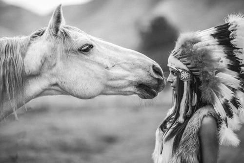 horse, beautiful, black and white, fashion, feather, fur, girl, greeneyes, indian, headdress, inspiring, native american