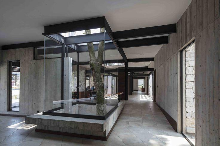 Gallery of Casa del Abuelo / Taller DIEZ 05 - 11