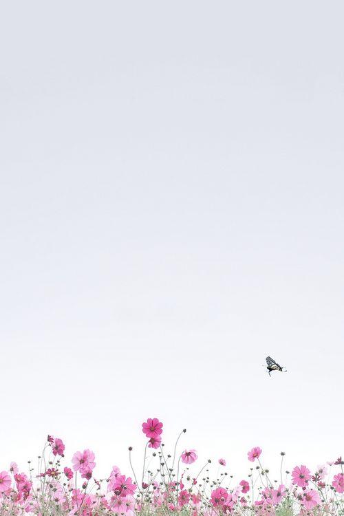 95 Best Monsoon Girls Images On Pinterest Backgrounds