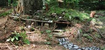 fairy houses maine - Norton Safe Search
